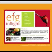 Concept Design - EFG Inflight